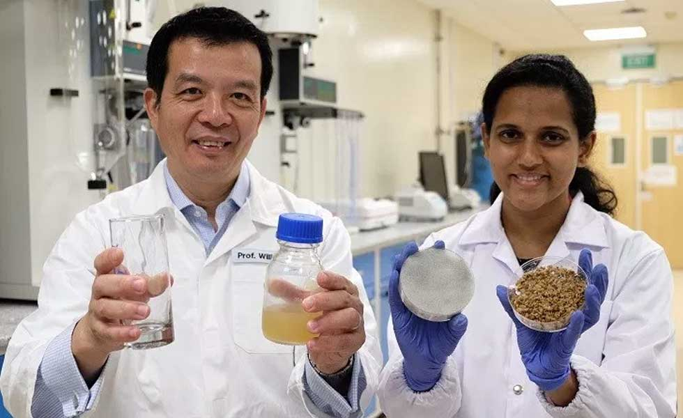 Scientists from Nanyang Technological University in Singapore