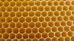 Flexible, honey-comb like 3D material could clear air pollution